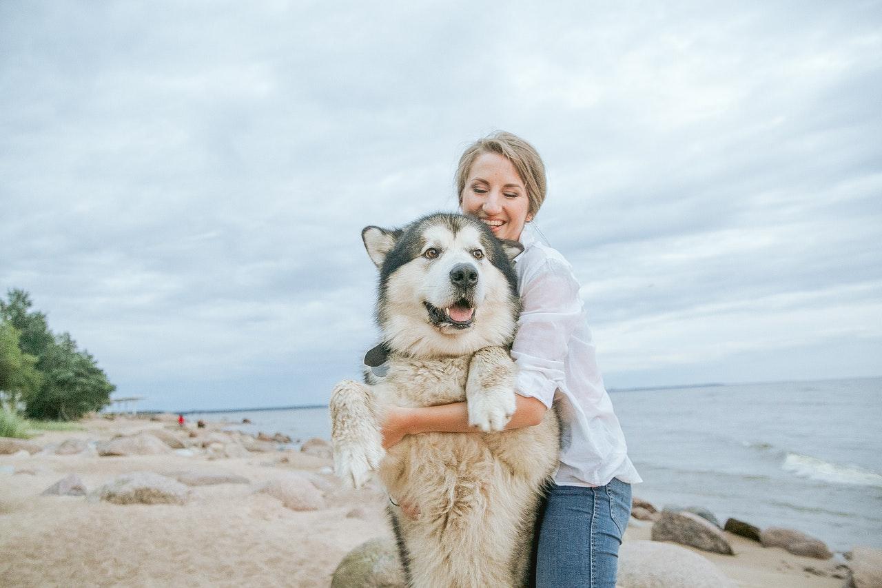 woman hugging her siberian husky 3671246